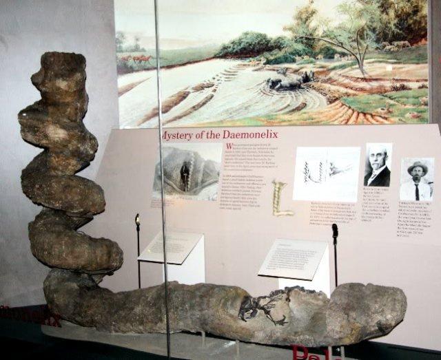 Ученые выяснили, кому принадлежат самые глубокие норы в мире