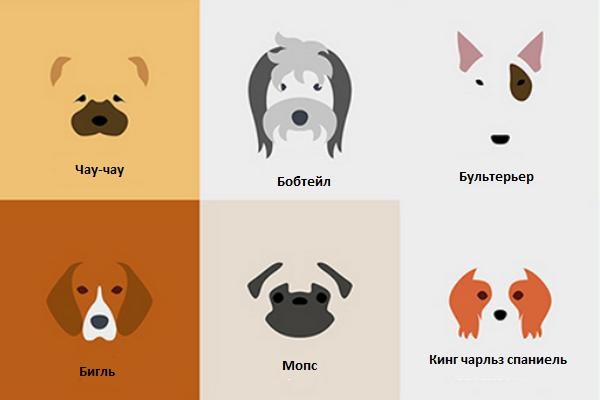 Минималистические рисунки различных пород собак