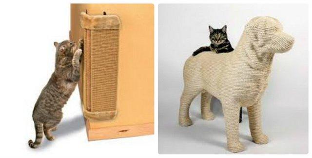 Как выбрать когтеточку, которая точно понравится кошке