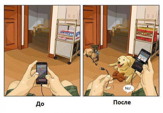 Жизнь до и после появления собаки (7 картинок)
