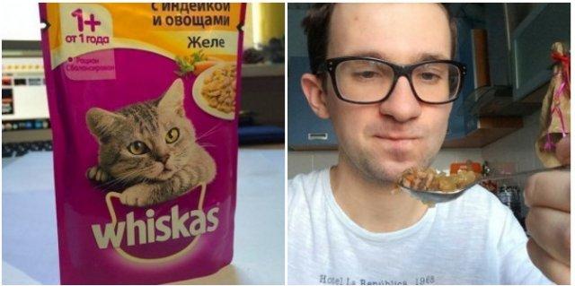 Блоггер попробовал на вкус 11 кошачьих кормов