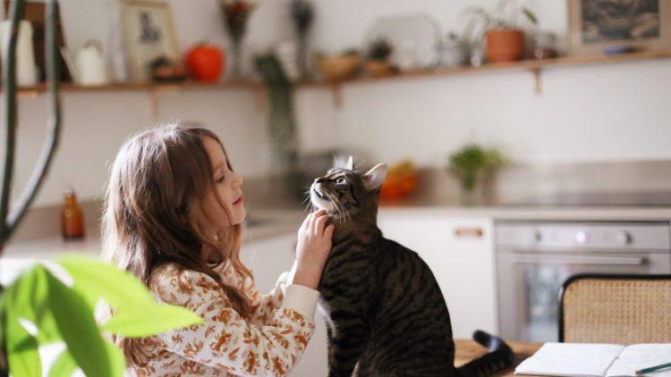 У детей, растущих вместе с домашними животными, реже развивается аллергия и ожирение