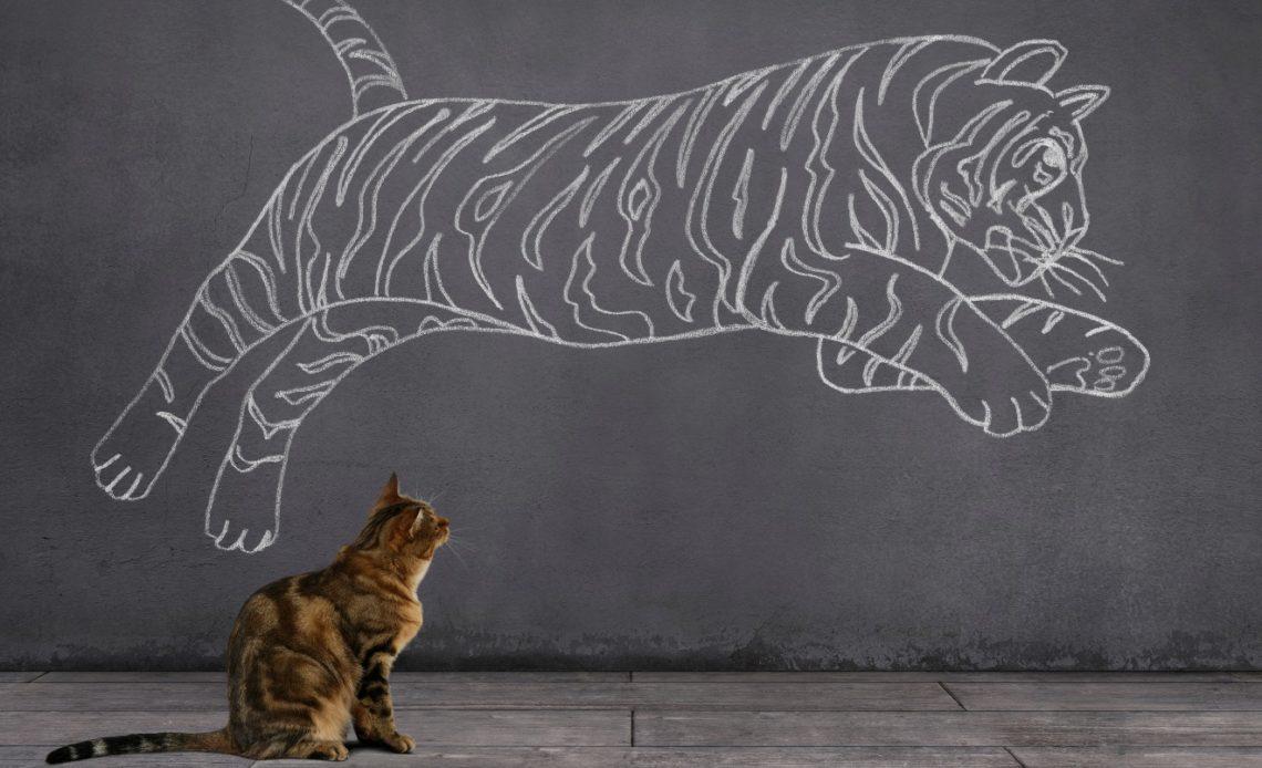 Породы тигровых кошек