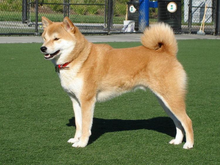 Хоккайдо