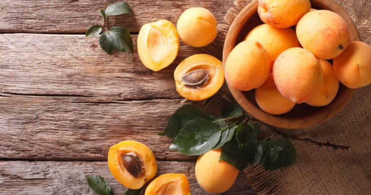 Ядовитыми для кошек являются семена, косточки, стебли и листья абрикосов